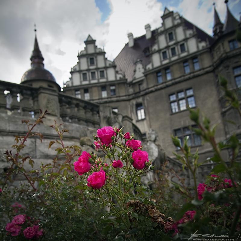 """Zamek Moszna. Dokładnie przycięta trawa i niemniej piękne kwiaty zdobią całe """"obejście""""."""